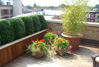 JRA Private Roof Deck Planters