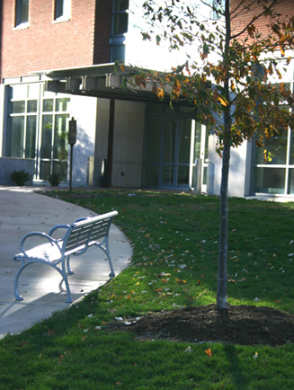 UIUC NCSA Benches