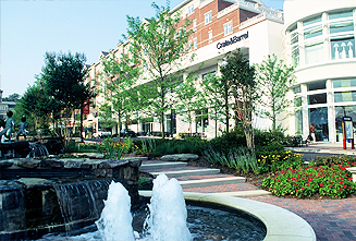 JRA Market Common Clarendon Fountain 5