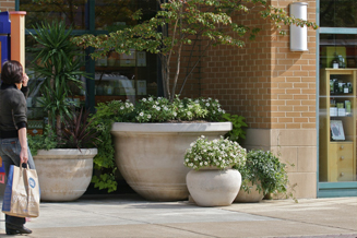 JRA Market Common Clarendon Planter Pots